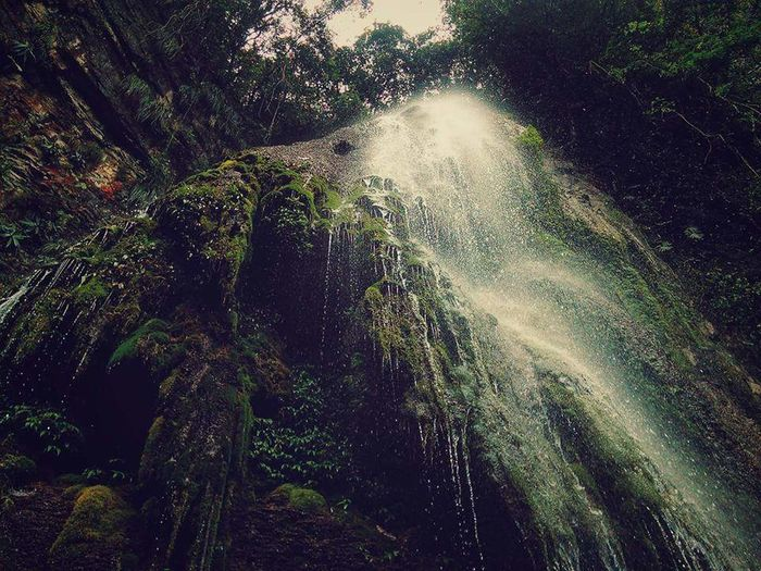 Paradiso 🌿💦Waterfall Waterfalls Waterfall_collection Cascade Cascades Nature Nature_collection Nature Photography Naturelovers Mexico_maravilloso Mexico Y Su Naturaleza Mexicomagico MexicoTravel