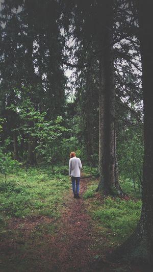 Tree Full Length Standing Women Forest Rear View Walking Sky Woods Green Pathway