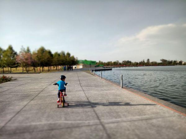 Ms Parque  Aire Aire Libre Cielo Sky Bicicleta Diversion Child Park Cdmx Boy Day One Boy Only Outdoors