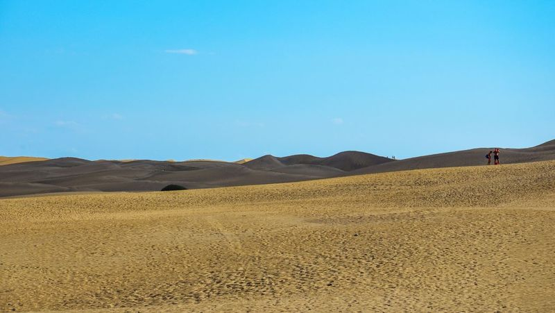 DunesDunesDunes Sand Nature Desert Dunes Arid Climate Blue Tranquil Scene Sand Dune Tranquility Clear Sky Day Outdoors Landscape Beauty In Nature Scenics Physical Geography People In The Distance Sky Lost In The Landscape Maspalomas Gran Canaria Perspectives On Nature The Great Outdoors - 2018 EyeEm Awards