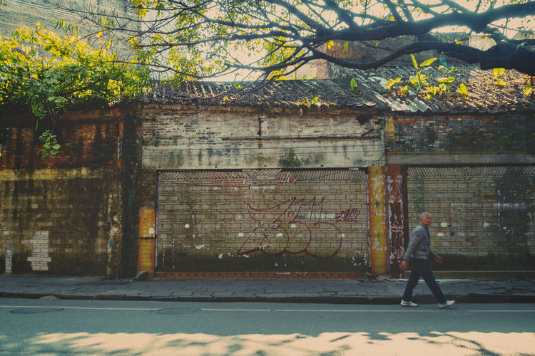 An old man walking through Kuaizi road in Foshan, China Architecture Built Structure China Day Lifestyles One Man Only One Person Outdoors People Real People Shadow Street Streetphotography Sun Sunlight Tree Walking Wall