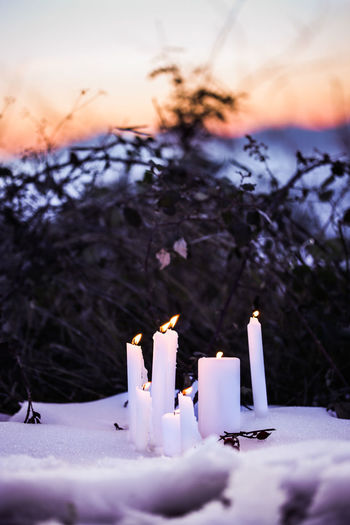 Candles Burning Candle Flame Nature Illuminated Glowing Plant Sunset No People Celebration Event Purple Selective Focus Tree Close-up