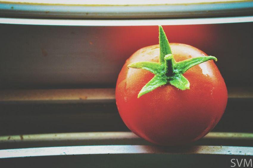 Home Grown Fresh Tomato Food