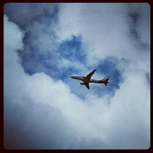 Voando de TAM TAMFoto