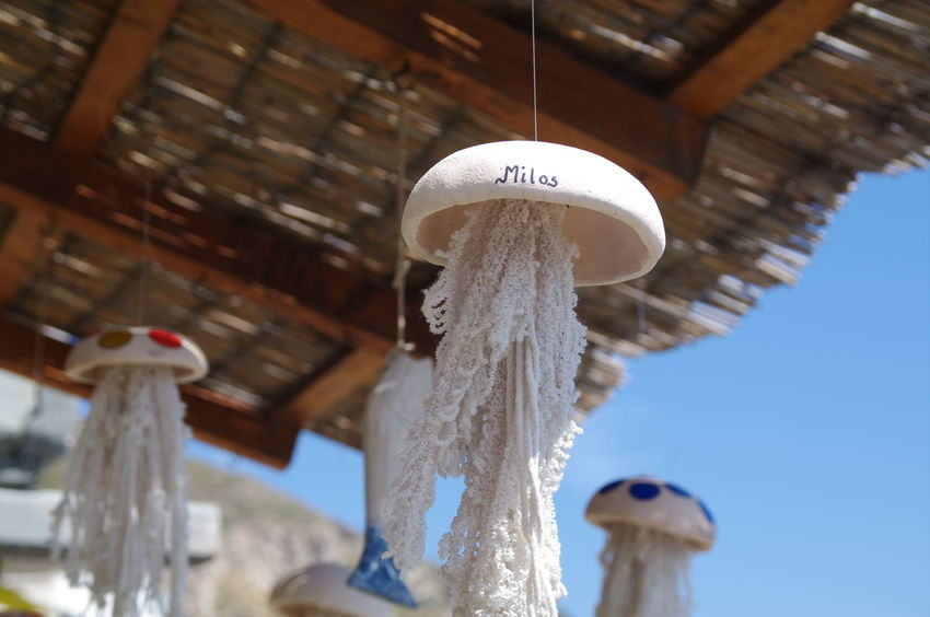 Andenken Griechenland Griechische Inseln Milos Island Bamboo - Material Close-up Day Greece Hanging Low Angle View Milos Nature No People Outdoors Quallen Souvenir Wood - Material