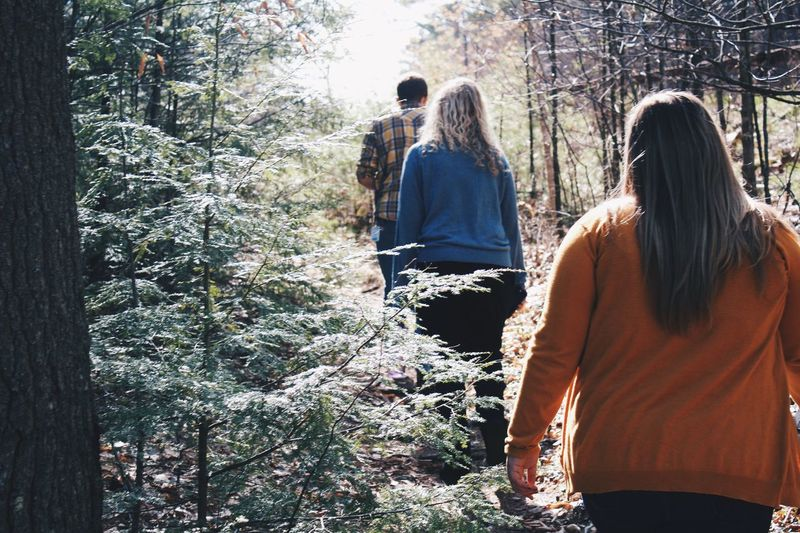 Rear view of women standing in forest