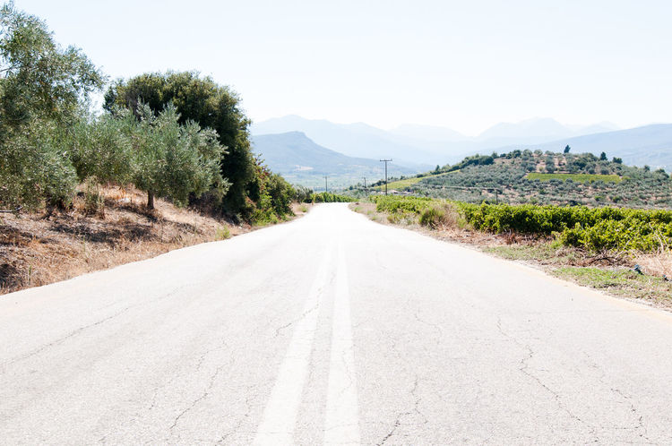 Clear Sky Farm Tranquility Field Day Nemea, Wine,wine_bottle,wineyard,greece,peloponnese Landscape Agriculture Growth Sky Outdoors Cypress Nature Scenics No People Grape Beauty In Nature Tranquil Scene Rural Scene Green Color Krasi,oinos,olive_trees, Winefields