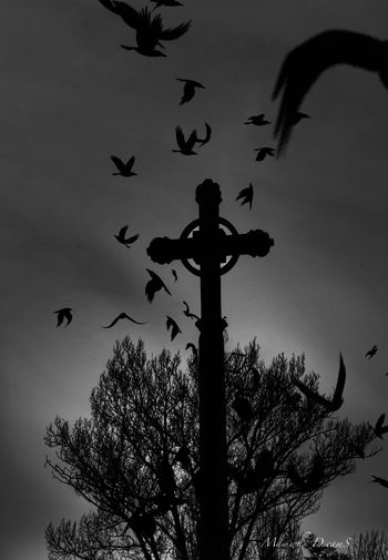 Dark Art ... 🙄