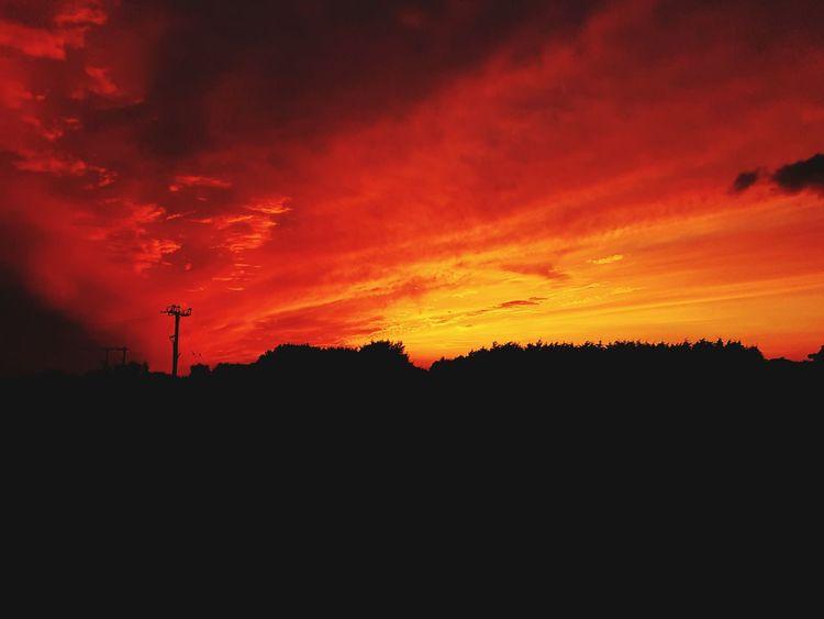 Sunset Silhouette Dramatic Sky Sky Tranquil Scene Big Sunset