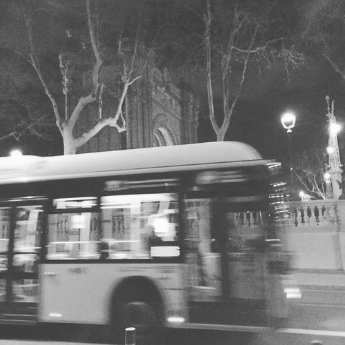 Noche Night Barcelona Arcdetriomf Arcdetriomphe Bus Autobus Busnit