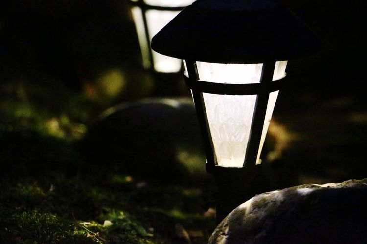 Lighting Equipment Close-up Focus On Foreground Illuminated No People Light Bulb Nature Freshness Electricity  Outdoors Night Holiday