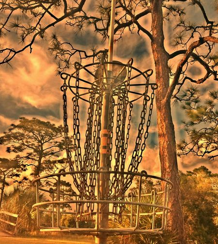 Sunset Tree Sky Nature Dramatic Sky No People Cloud - Sky Beauty In Nature Electricity Pylon Sun Outdoors Day Disc Golf Course Frisbee Golf Sports