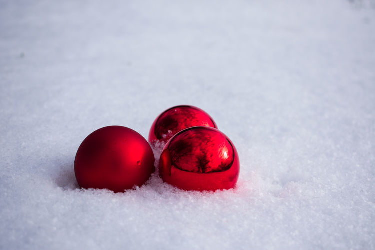 Snow Cold Temperature Red Winter No People Nature Food Frozen Food And Drink White Color Healthy Eating Fruit Day Close-up Freshness Covering Copy Space Land Field