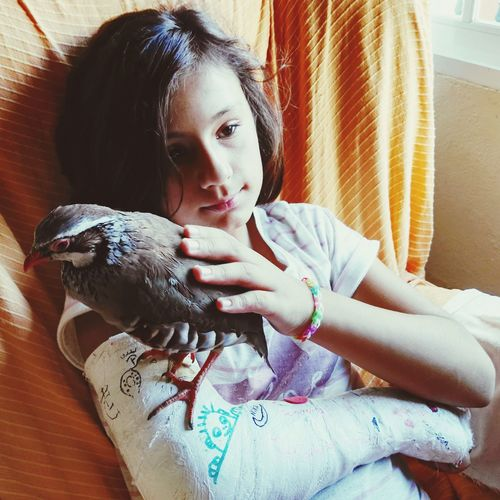 Bird perching on fractured arm of girl in bed