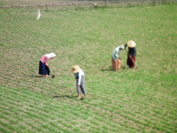 Amazing ASIA Burma Crowdfunding Stop Be Narrow The Last Test Photo....