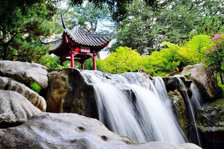 Chineese garden of friendship Chinese Garden Waterfall Sydney, Australia Tranquility