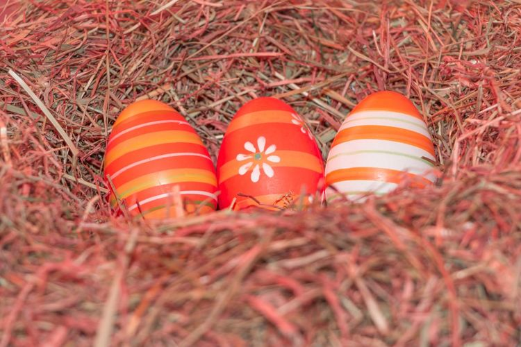 Traditional easter holiday festival celebration with three reddish eggs in hay straw in warm spring colors. Beautiful present symbol. Easter Easter Bunny Easter Egg Easter Ready Easter Sunday Easter Eggs Fun Holiday Red Tradition Celebration Close-up Decoration Eastereggs Eggs Hidden Hidden Places No People Oranmemts Present Reddish Searching Surprise Three Traditional