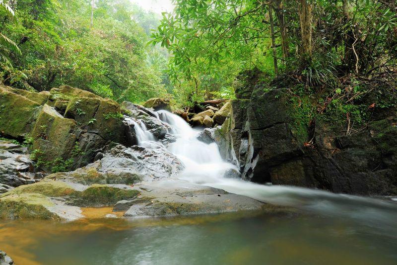 Endau Rompin Eco Park