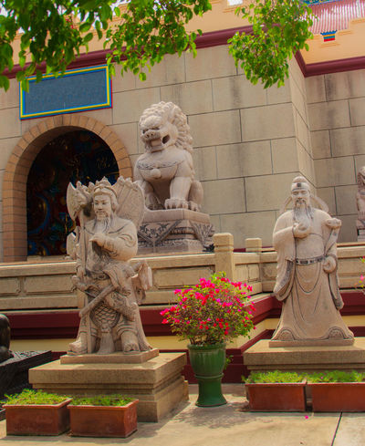 Stone Lion Guardian statue at the entrance gate of Anek Kusala Sala (Viharn Sien), Thai-Chinese temple in Pattaya, Thailand. It was built in 1987 and is one of popular tourist attractions Entrance Entrance Gate Lion Pattaya Statue Viharnra Sien Art And Craft Chinese Temple Creativity Day Entrance Door Guardian Human Representation Male Likeness No People Outdoors Sculpture Statue Stone Stone Lion