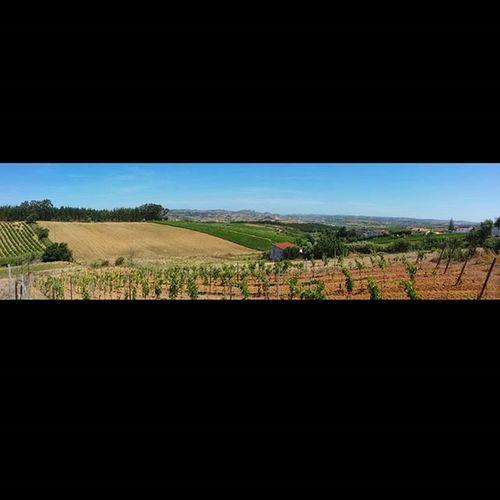 Traços de Portugal - Estremadura 😉 Landscape Nature Estremadura Portugal Green Blue Instasize Natureza Naturelovers Panorama Panoramic