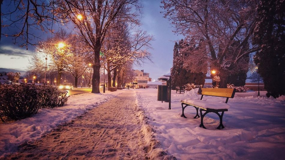 Winter Snow Outdoors Sunset Nature Street Urban Landscape Lights Pathway Season  Tranquility Cold Temperature Beauty In Nature Scenery Winter Wonderland Evening Evening Sky Colurs Of Sky Bench