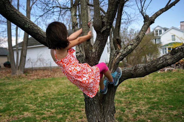 climbing trees. Fun Carefree Happiness Joy Tree Enjoyment Outdoors Motion Leisure Activity Smiling People Young Women One Person Climbing Trees Backyard Backyard Fun Childhood Kids Being Kids Youth Live For The Story