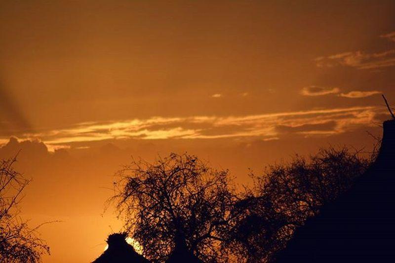 بلدي_ياحبوب شمس_السودان_التي_لاتغيب تصويري  Dark_captures pretty sunset sudan