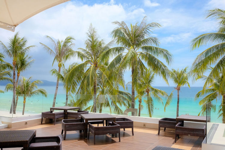 Philippines Relaxing Absence Beach Beauty In Nature Boracay Chair Day Horizon Over Water Lounge Chair Luxury Nature No People Outdoors Palm Tree Plant Pool Sea Seat Sky Swimming Pool Tourist Resort Tree Tropical Climate Water