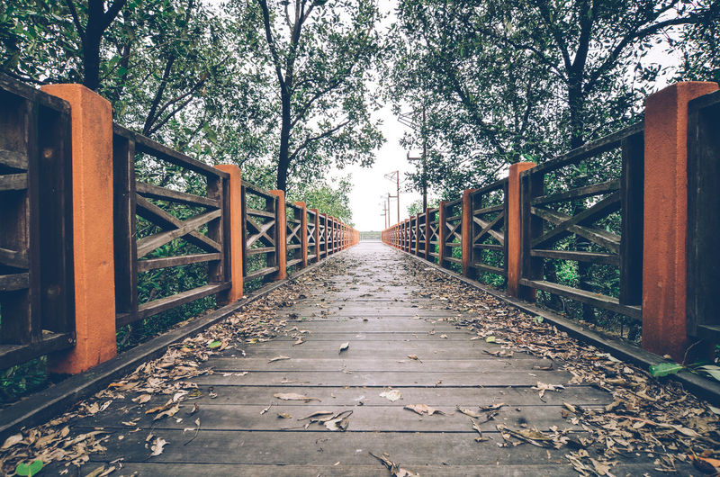 wooden footbridge Architecture Built Structure Day Footbridge Horizontal Jetty Metal Nature No People Outdoors Railing Sky Tree Vscocam