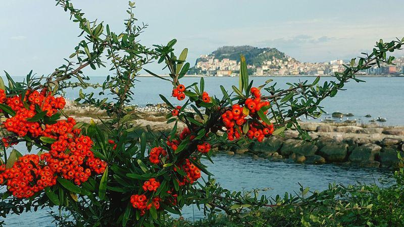 Goodevening  Giresun Today View Gorgeous Sea Beautiful Sky EyeEm Best Shots EyeEmbestshots First Eyeem Photo Red