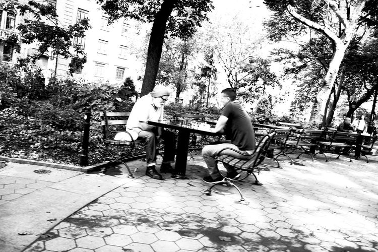Adult B&w Street Photography Black And White Chess Day Full Length Game Leisure Activity Lifestyles Mammal Men Musical Instrument Nature Outdoors Playing Real People Sitting Sky Togetherness Tree Two People Monochrome Photography My Year My View
