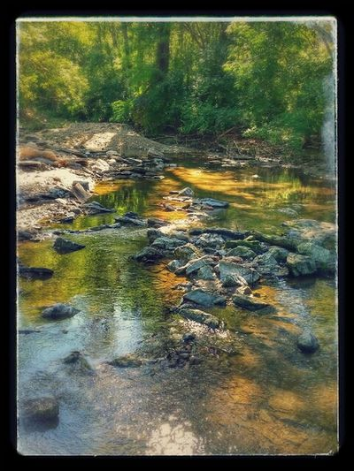 Creek walkin' Walking Around Discover Your City Nature