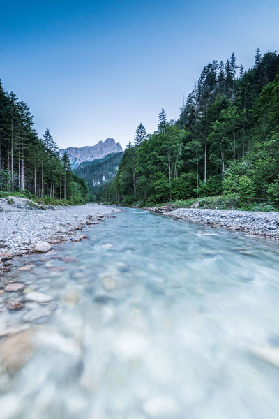 Austria Beauty In Nature Blue Clear Sky Day Gesäuse Mountain Nature No People Outdoors River Scenics Sky Styria Surface Level The Way Forward Tranquil Scene Tranquility Tree Water