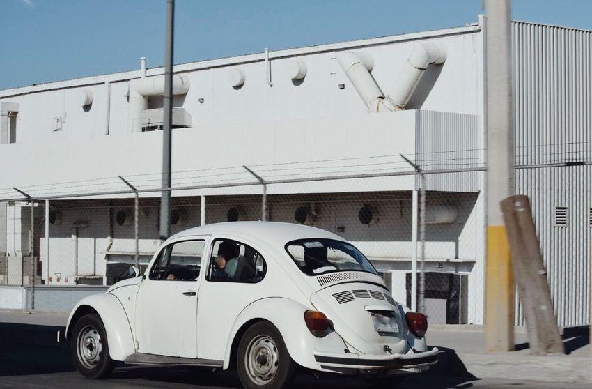 Car White White Car White Building Beetle Volkswagen Volkswagen Beetle Transportation