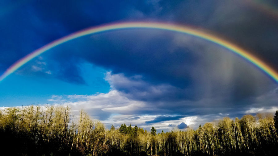 No gold at either ends, I checked. 😔 Rainbow Multi Colored Cloud - Sky Weather Spectrum Nature No People Outdoors Beauty In Nature Day Scenics Sky Landscape Refraction Darryn Doyle Check This Out Illuminated Full Frame