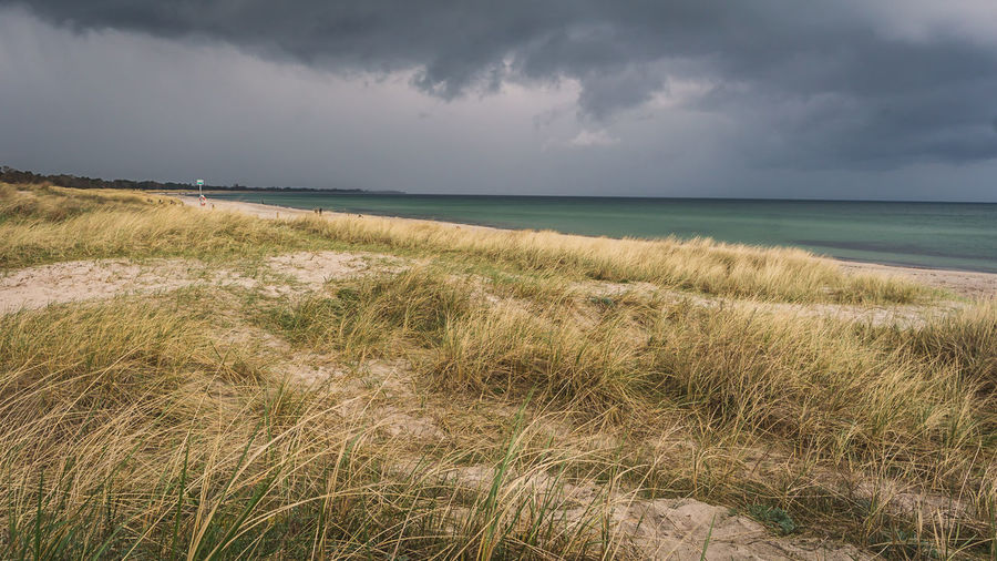 The Storm ist Coming over the Baltic Sea Wolken Epic Shot Photography Landschaftsbilder Stormy Weather Beach Beachphotography Beauty In Nature Cloud - Sky Day Dünen Grass Growth Horizon Over Water Landscape Landscape_photography Marram Grass Nature No People Outdoors Sand Scenics Sea Sky Tranquil Scene Tranquility Water EyeEmNewHere EyeEmNewHere