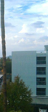 Minimalist Architecture Cloud - Sky Sky No People Architecture Built Structure Tree Outdoors Urban Phoenix Az Phoenix, AZ Building Exterior Apartment Condo Condominium . . Condominiums Condominium Architecture Tree Trunk Trees And Sky Buildingphotography Building Photography Buildings And Sky Building Exteriors Buildingsandtrees Palm Tree Trunk