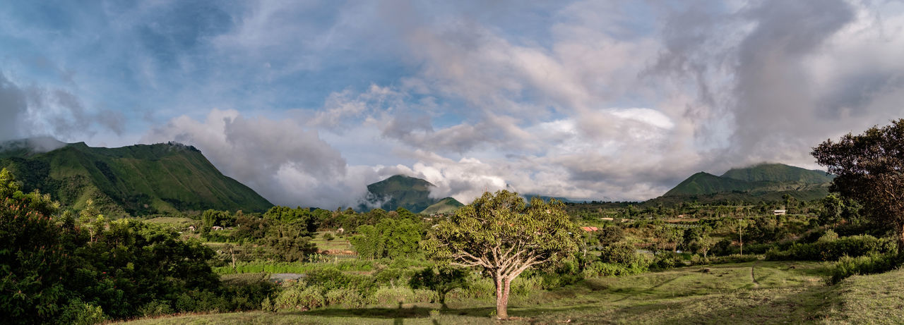 Panoramic shot of Pergasingan Hill and Anak Dara Hill in Lombok, Indonesia. Beauty In Nature Cloud Cloud - Sky Cloudy Day Grass Green Color Idyllic Landscape Lombok Mountain Mountain Range Nature Outdoors Panorama Pergasinganhill Physical Geography Remote Scenics Sembalun Sky Tranquil Scene Tranquility Weather
