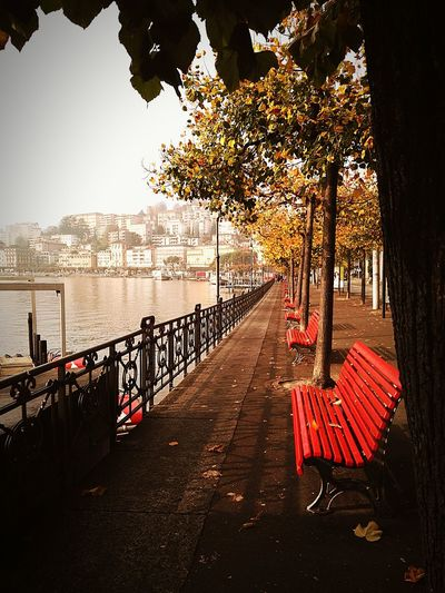 City Cityscape Luganocity Walking Around The City  ParcoCiani Fall Beauty Fall Colors Onthelake Lakeview Lungolago Lugano, Switzerland Goodmorning EyeEm  EyeEm Nature Lover Autumn Colors Specialmoment City Life Redbench