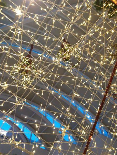 Full frame shot of illuminated spider web