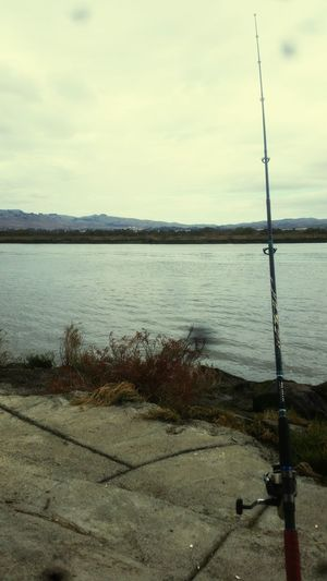 Fishing Napa River Tranquility Northern California Fishing Pole