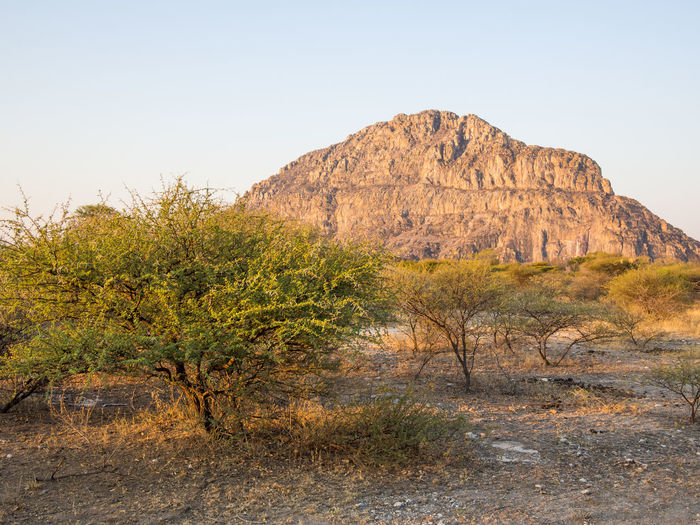 Botswana Africa Arid Climate Beauty In Nature Clear Sky Day Desert Grass Landscape Nature No People Outdoors Plant Rock - Object Rock Formation Scenics Sky Tranquil Scene Tranquility Travel Destinations Tsodilo Hills