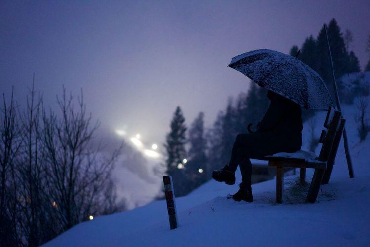 Bench Snow ❄