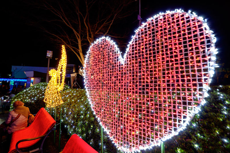 中山競馬場 Fujifilm Fujifilm X-E2 Fujifilm_xseries Horse Race Illustration Japan Japan Photography JRA Nakayama Racecourse Night Night Lights Nightphotography イルミネーション 中山競馬場 はーと