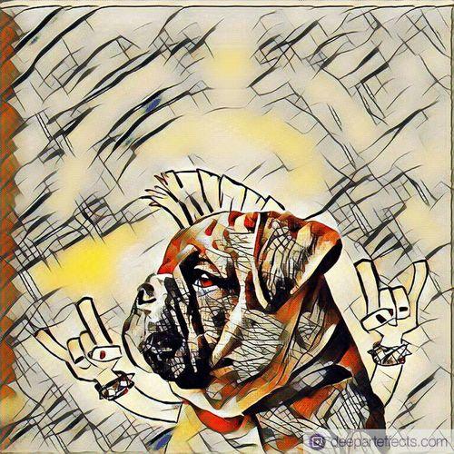 Dog Ohneworte No People Hund Ceb.ev Ceb.ev Dieden Crazy Art Fantasie Abgedreht bulldog englische bulldogge