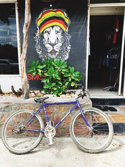 Transportation No People Built Structure Bicycle Land Vehicle Day Art And Craft Decoration Creativity