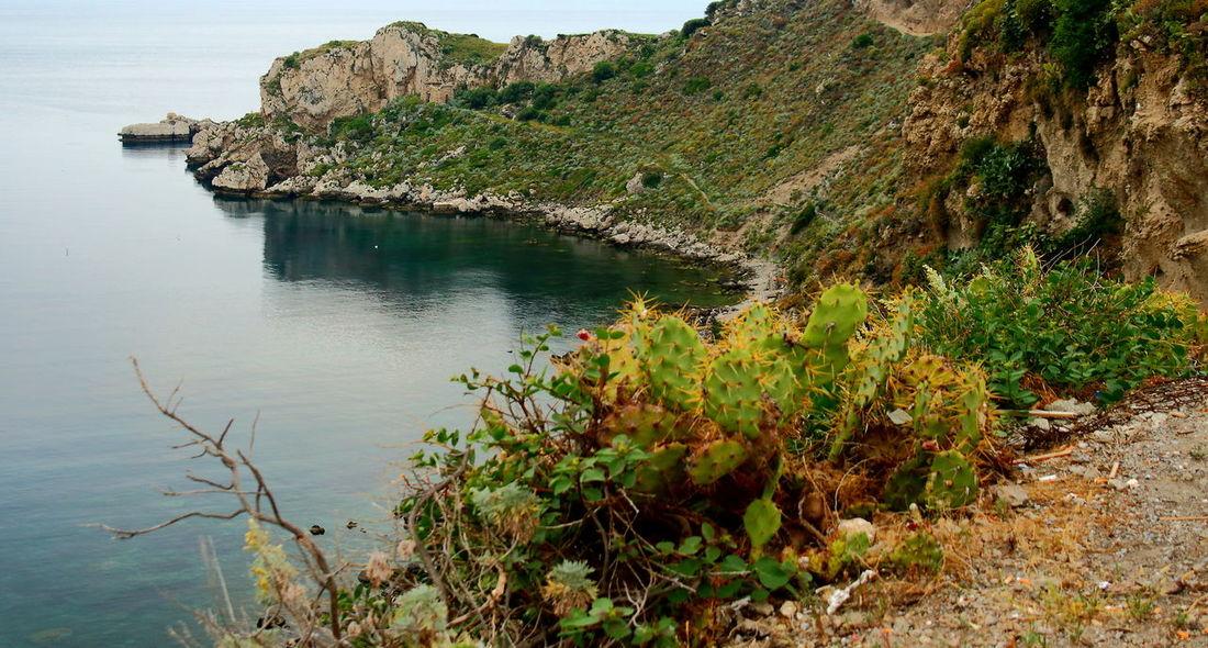 Beauty In Nature Capo Milazzo Colline Costa Italy Landscape Macchia Mediterranea Mare Milazzo Nature Nature No People Outdoors Penisola Primavera Rocce Sea Sicily Spring Tourism Tranquility Vegetazione Water