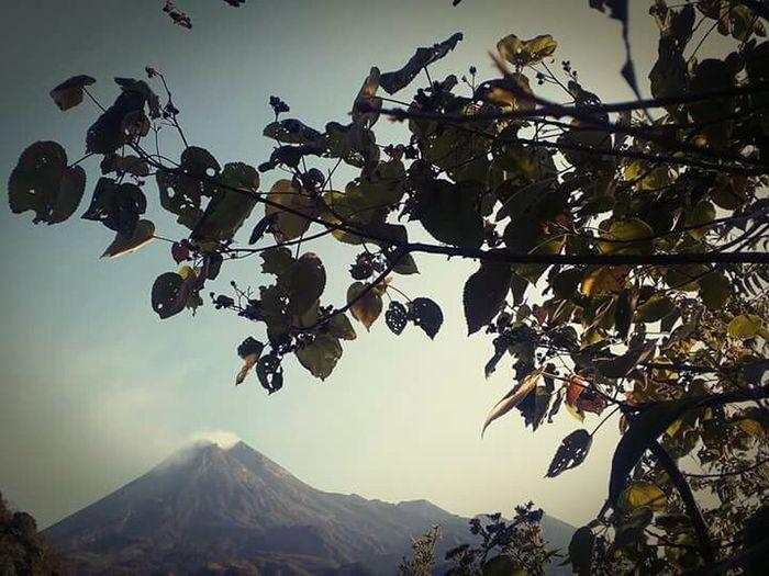 Merapi Yogyakarta Mystical Myth Jungle Trekking