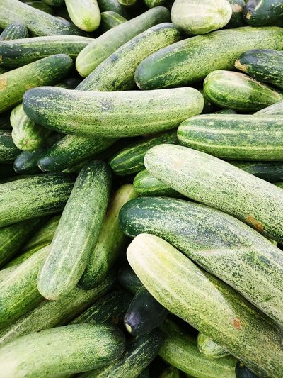 Cucumber Cucumbers Backgrounds Full Frame Close-up Green Color Prepared Food Agricultural Field Raw Healthy Food Healthy Nutrition For Sale Served Farmland Plantation