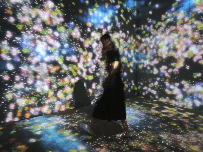Taking Photos Love Art Flowers Projection Mapping A Whole Year per Hour / Flowers and People, Cannnot be Controlled but Live Together - A Whole Year per Hour 花と人、コントロールできないけれども、共に生きる presented by Team Lab Interactive  Digital Installation